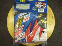BSI Products Nascar 2000, Mark Martin 3x5 Flag  in Colorado Springs, Colorado